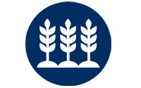 Agrochemicals icon